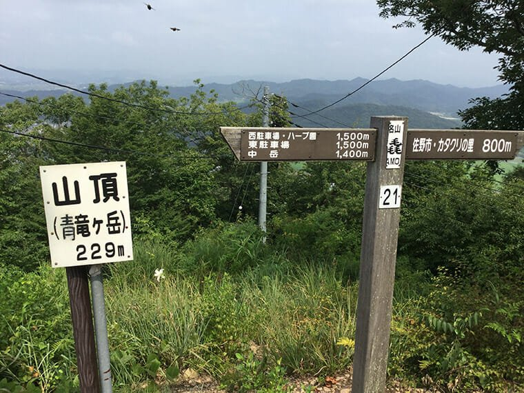 青竜ヶ岳の頂上