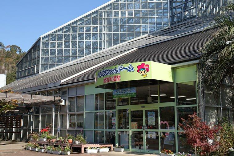 栃木花センター