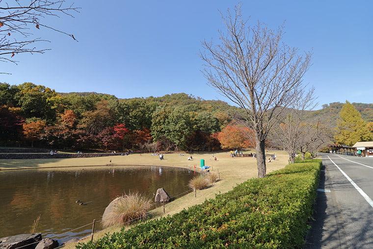 みかも山公園の芝生広場