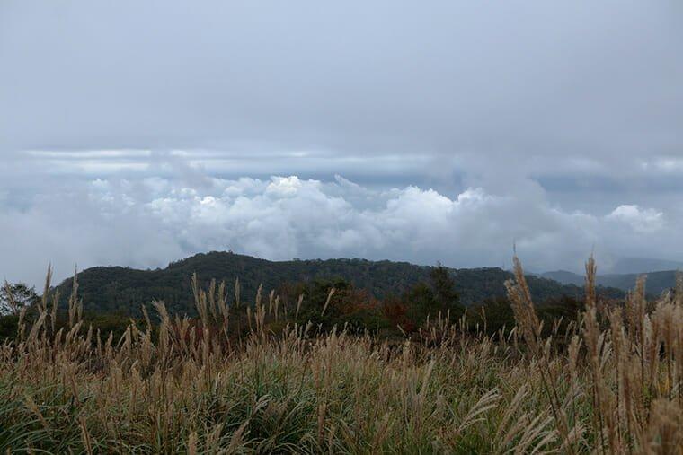 長七郎山山頂付近