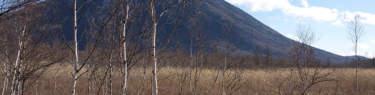 戦場ヶ原から男体山を望む