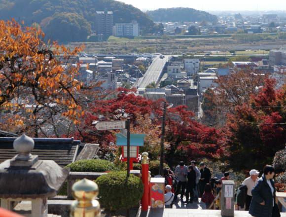 足利織姫神社から足利市街地を望む