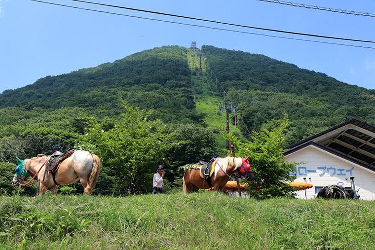 榛名湖畔 乗馬体験