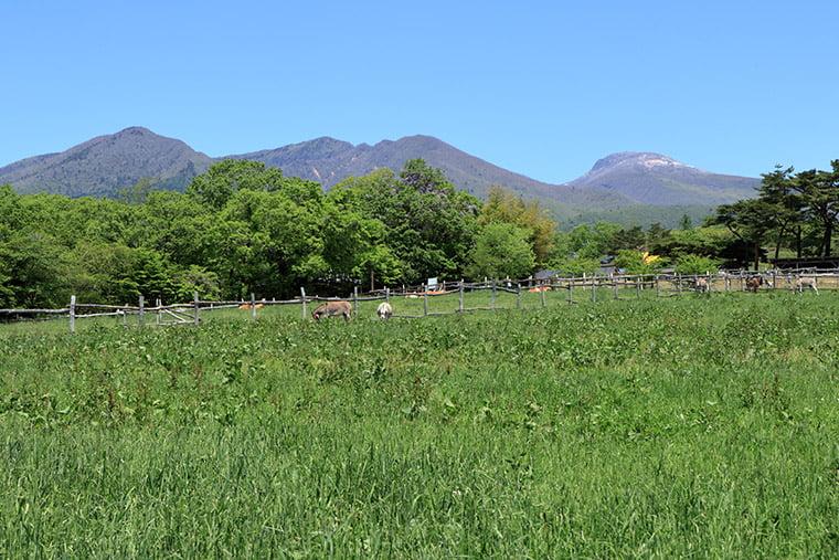 那須連山と牧場の風景
