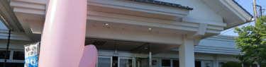 岩下の新生姜ミュージアムの玄関