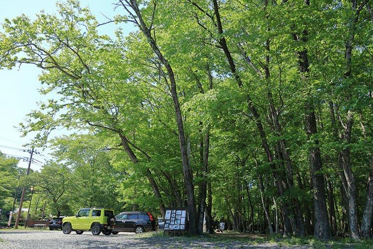 サンタクロース村(妖精の森)の駐車場