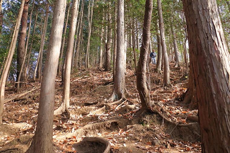 富士浅間神社への山道