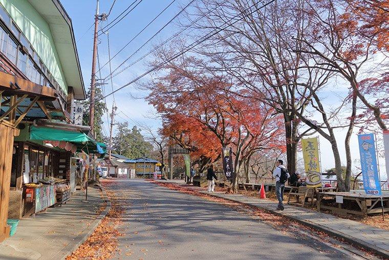 大平山のお茶屋さんと紅葉