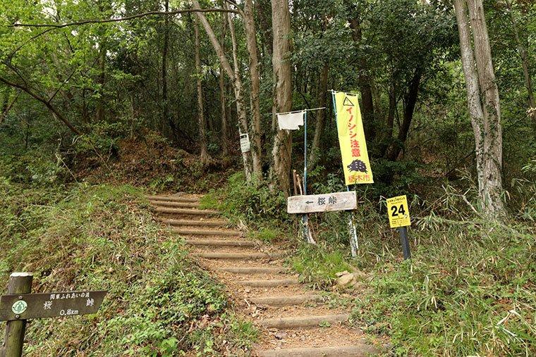 桜峠の登山口