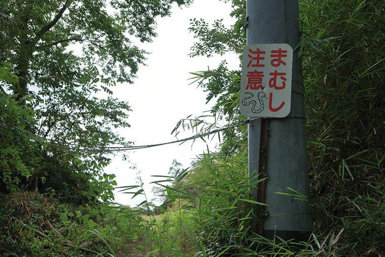 岩船山クリフステージへの小道