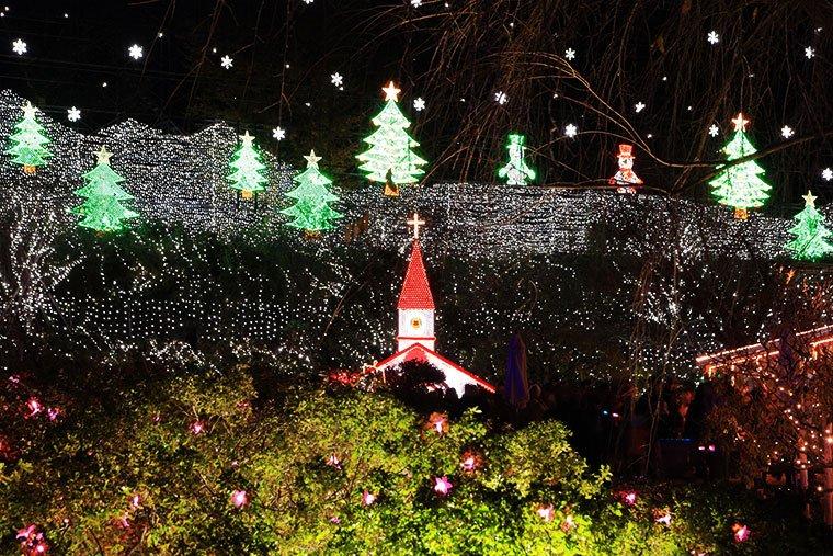 あしかがフラワーパーク クリスマスファンタジー