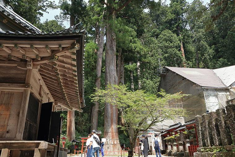 日光二荒山神社の神苑