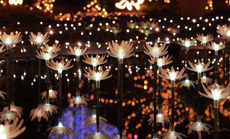 フラワーファンタジー 光の花の庭2019のイメージ