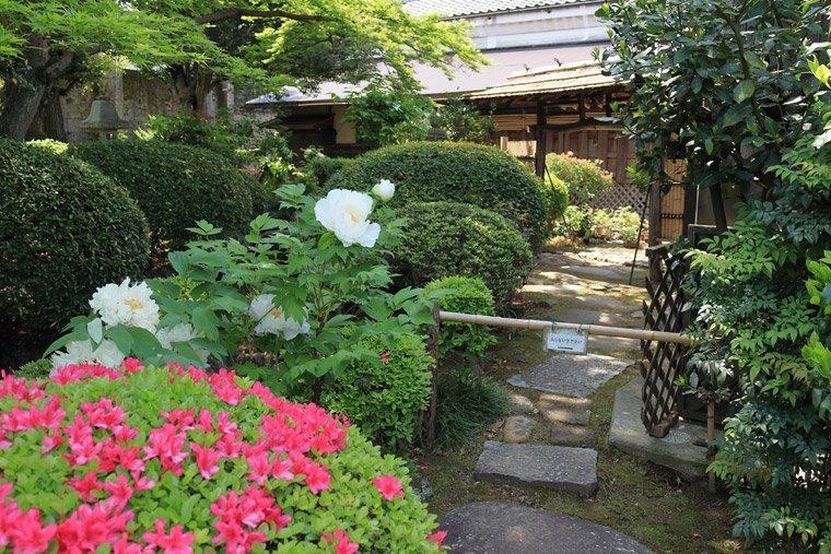 車車屋美術館(小川家住宅)の庭園
