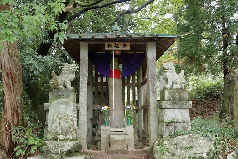 加波山の桜観音