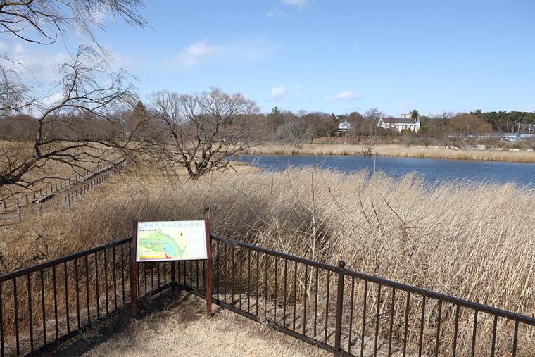 茂林寺沼の風景