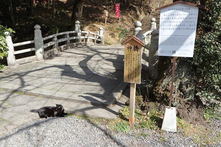 唐澤山神社の神橋
