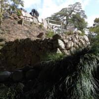 二の丸跡から見上げる本丸跡の石垣