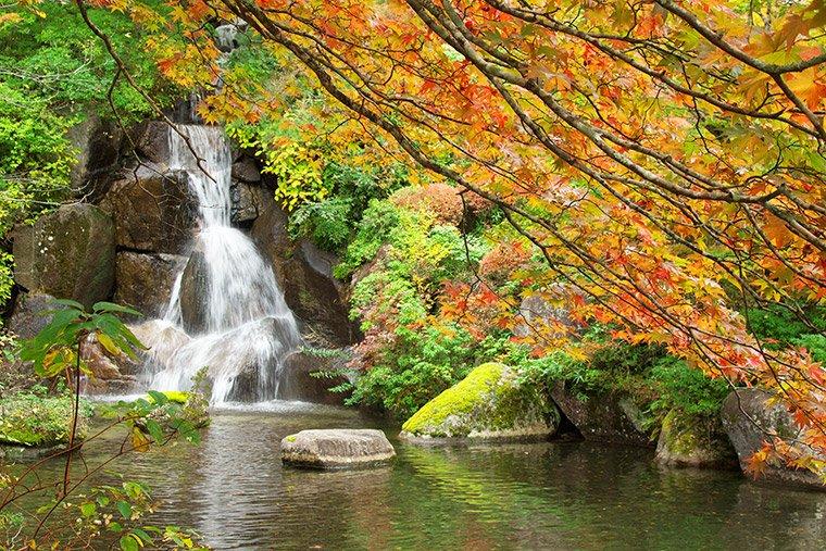 古峯園の滝と紅葉