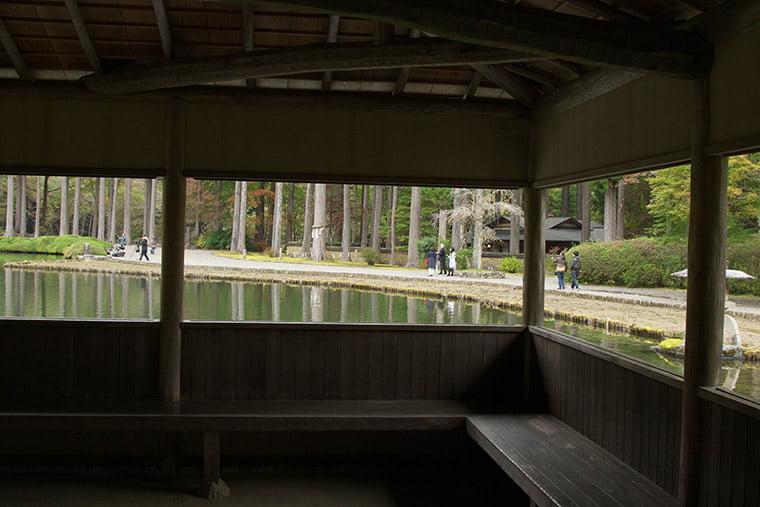 峯の池周囲の風景