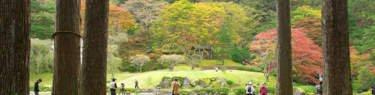 古峯園の全景