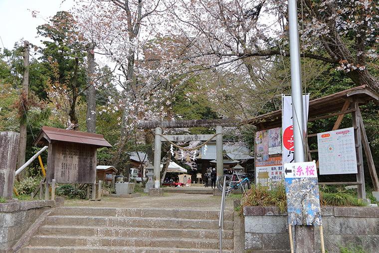 櫻川磯部稲村神社の正面