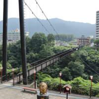 鬼怒楯岩大吊橋の全景