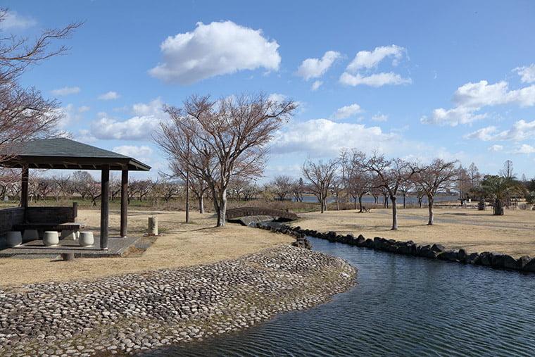 沼辺の公園