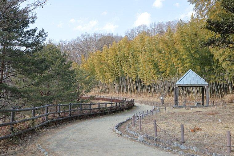みのりの森の風景