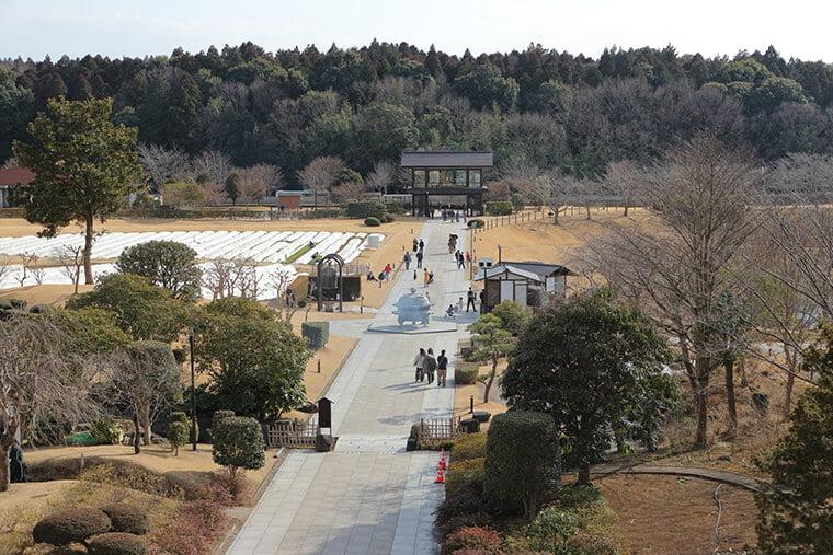浄土庭園の全景