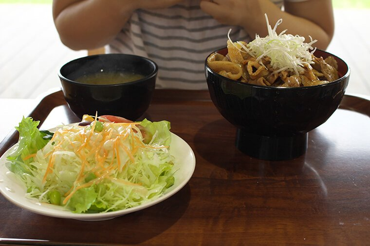 茨城県産豚のポーク丼