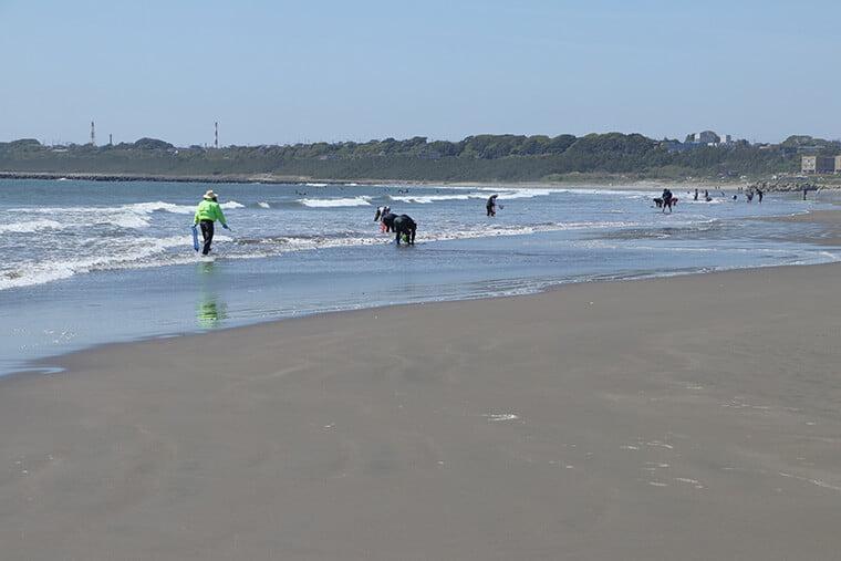 大洗サンビーチ海水浴で潮干狩り
