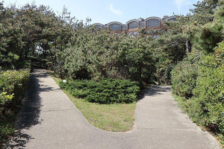 国民宿舎 鵜の岬の散策路
