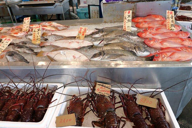 松野屋本店の伊勢海老と鮮魚